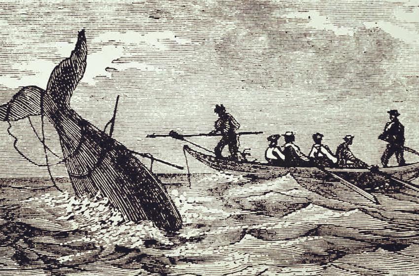 Origins of Sea Shanties
