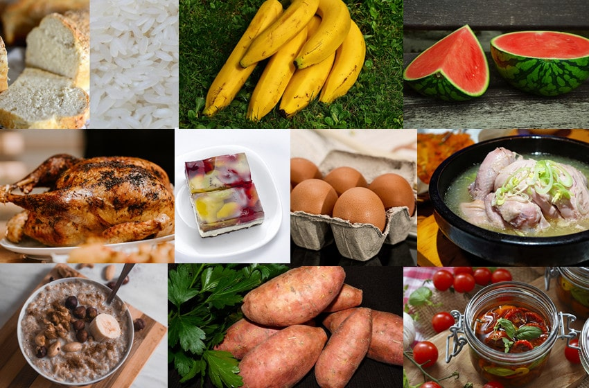 foods that are easy to digest
